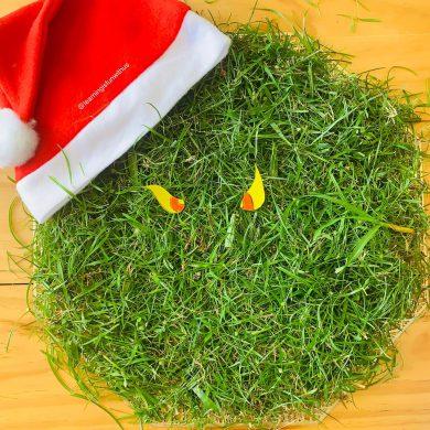DIY Christmas Wreath with minimum items!